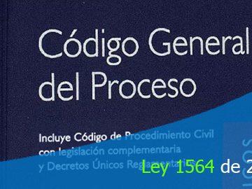Ley 1564 de 2012