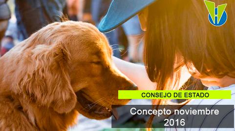Personas y mascotas, una relación basada en la expresión del libre desarrollo de la personalidad