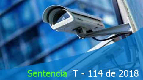 Sentencia T-114 de 2018