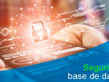Medidas de seguridad obligatorias en el manejo de bases de datos
