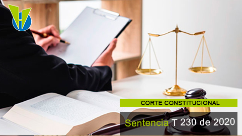 Sentencia T 230-20